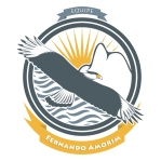 Fernando Amorim_logo