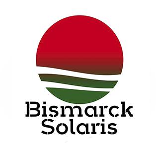 log-bismarck
